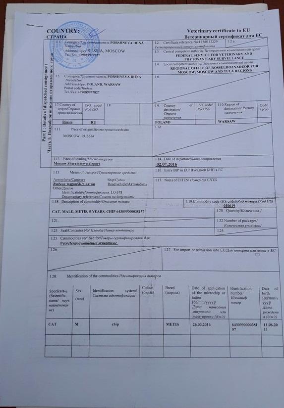ветеринарный сертификат для ЕС