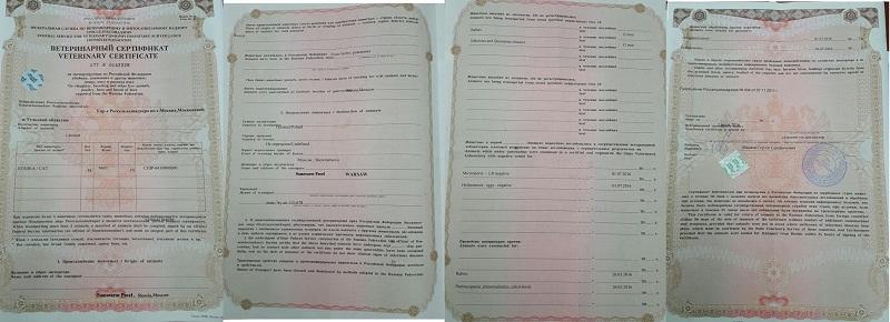 ветеринарный сертификат форма 5 а