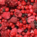 сушеные лесные ягоды